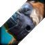 Dota 2: Hướng dẫn chi tiết cách chơi Monkey King hiệu quả nhất 54