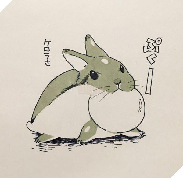 Liệu đây có phải là Totoro không nhỉ?