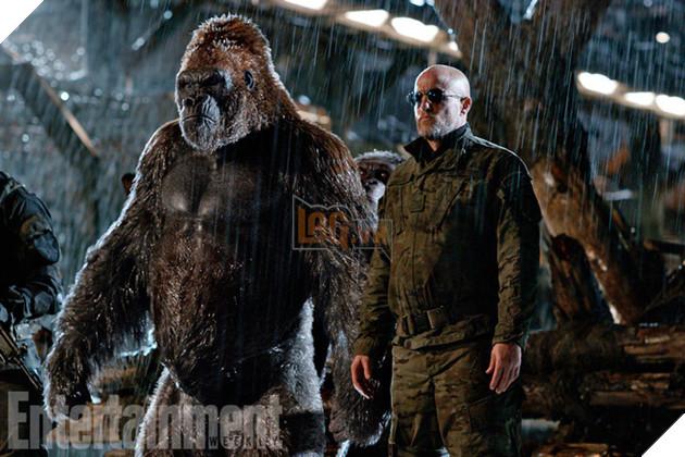 Phe nổi loạn với sự cầm đầu của vị tướng do Woody Harrelson thủ vai.