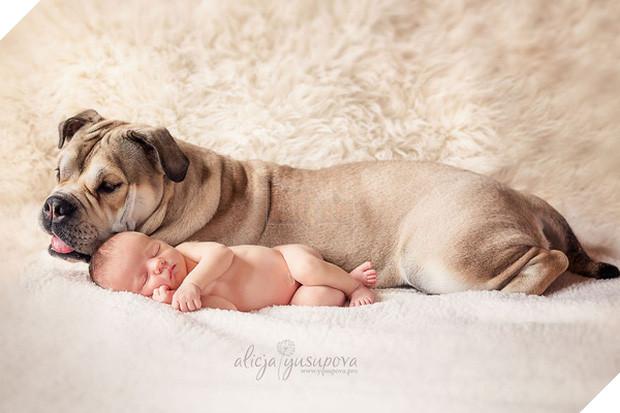 Bộ ảnh tình bạn đẹp tuyệt vời của em bé và các loài động vật - Ảnh 27.