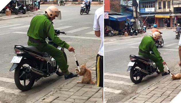anh công an trêu mèo ven đường