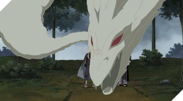 Những con rồng mạnh nhất từng xuất hiện trong Naruto, bạn nhớ được bao nhiêu?