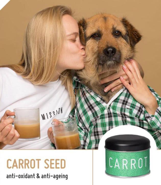 Không đùa đâu! Thế giới đã xuất hiện Start up Coffee độc nhất vô nhị chỉ dành riêng cho… loài chó