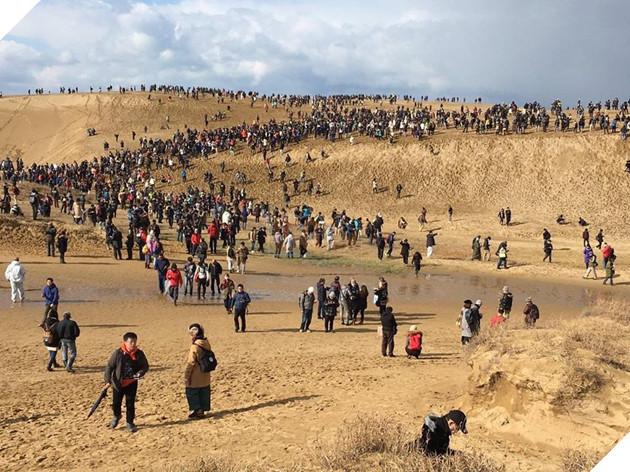 Nhìn này, 90.000 người đã lang thang giữa sa mạc 3 ngày liền chỉ để bắt Pokémon - Ảnh 2.