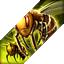 BnS: Chỉ số và hiệu ứng của Vệ Hồn Vua Quạ cho tất cả các class 55