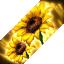 BnS: Chỉ số và hiệu ứng của Vệ Hồn Vua Quạ cho tất cả các class 56