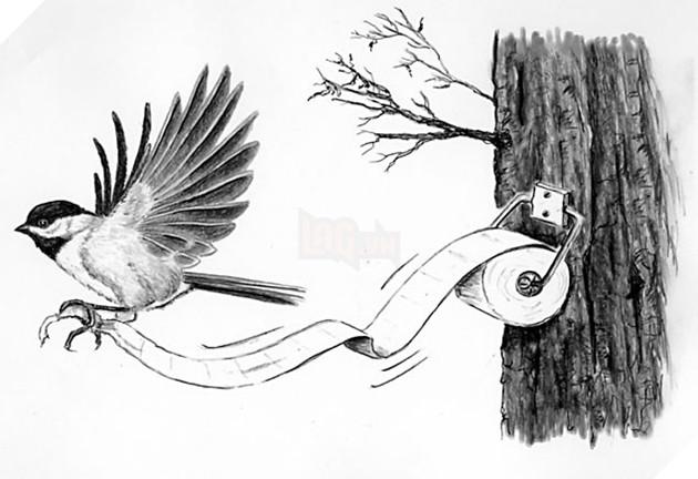 Cà tím chứa nicotine, loài chim không biết tiểu tiện và 16 sự thật không phải ai cũng biết - Ảnh 1.