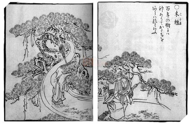 Âm Dương Sư: Tổng hợp toàn bộ loại yêu ma trong Văn Hóa Nhật Bản 32