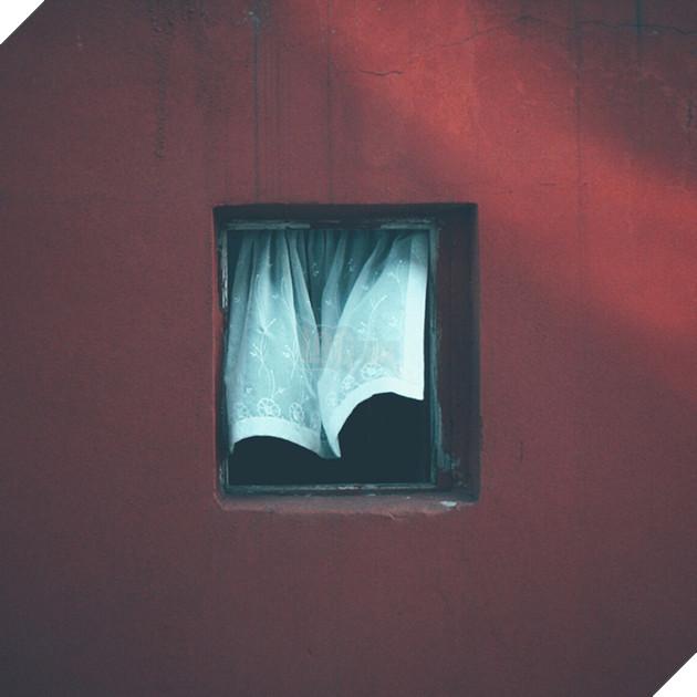 Dành 12 năm chỉ để chụp một khung cửa sổ: vật vô tri trên tường nhà hàng xóm cũng có thăng trầm của riêng nó - Ảnh 5.