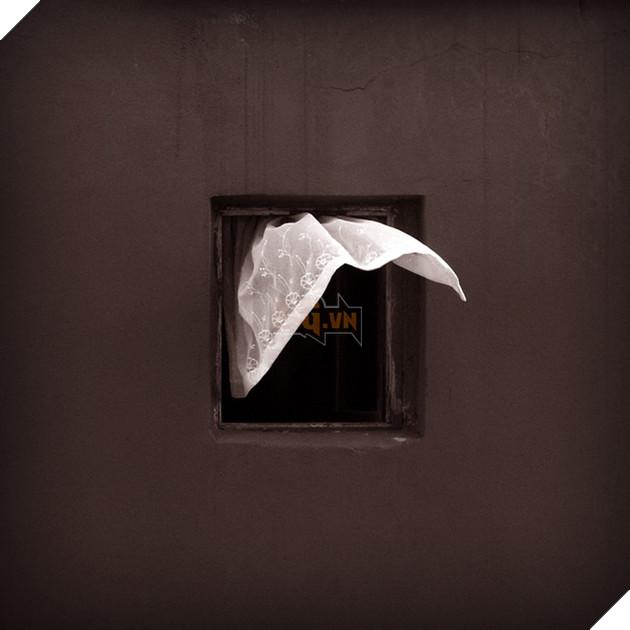 Dành 12 năm chỉ để chụp một khung cửa sổ: vật vô tri trên tường nhà hàng xóm cũng có thăng trầm của riêng nó - Ảnh 15.