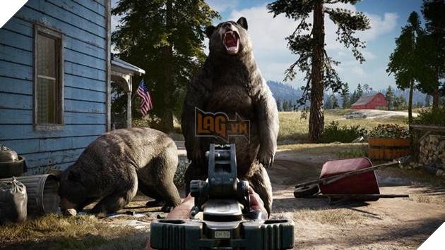 Thay vì voi với hổ, lần này sẽ gặp gấu nhé
