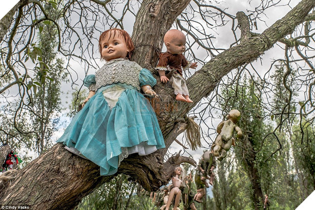 Keeping watch: 'Thousands' of dolls hang from the trees in the woods known as the Isla de las Munecas, and hundreds more are hidden among the overgrown grass