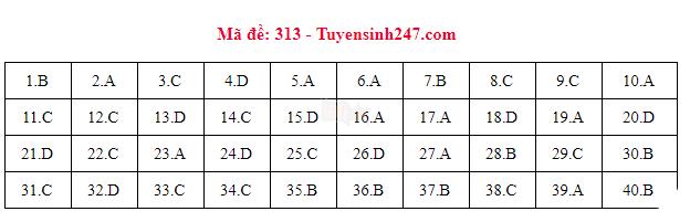 [CẬP NHẬT] Gợi ý đáp án các mã đề thi môn Lịch sử trong kỳ thi THPT Quốc gia 2018 - Ảnh 6.