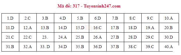[CẬP NHẬT] Gợi ý đáp án các mã đề thi môn Lịch sử trong kỳ thi THPT Quốc gia 2018 - Ảnh 8.