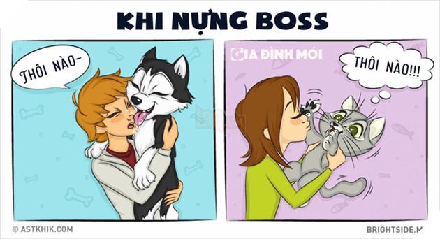 Những điểm khác nhau siêu hài hước giữa boss và hoàng thượng, bạn có biết? 2