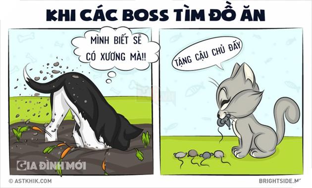 Những điểm khác nhau siêu hài hước giữa boss và hoàng thượng, bạn có biết? 10