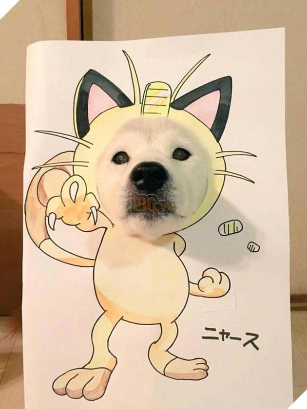 Cười sái quai hàm với chùm ảnh khi bạn là chó nhưng sen lại đam mê Pokemon - Ảnh 8.