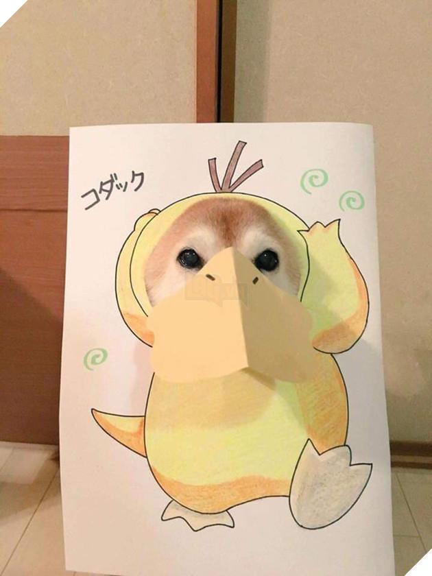 Cười sái quai hàm với chùm ảnh khi bạn là chó nhưng sen lại đam mê Pokemon - Ảnh 12.