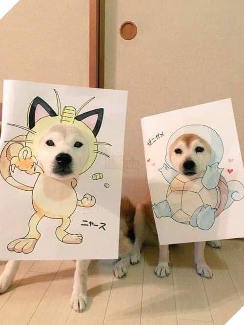 Cười sái quai hàm với chùm ảnh khi bạn là chó nhưng sen lại đam mê Pokemon - Ảnh 13.