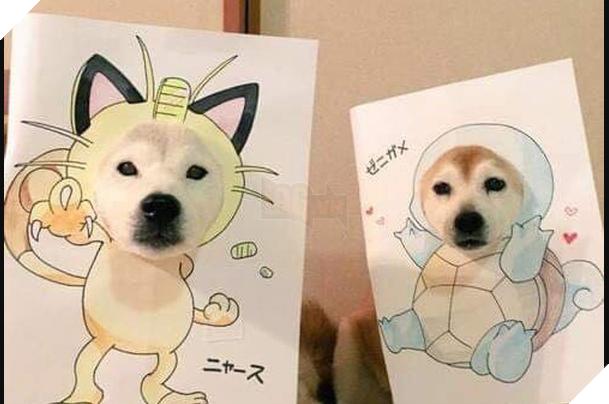 Cười sái quai hàm với chùm ảnh khi bạn là chó nhưng sen lại đam mê Pokemon