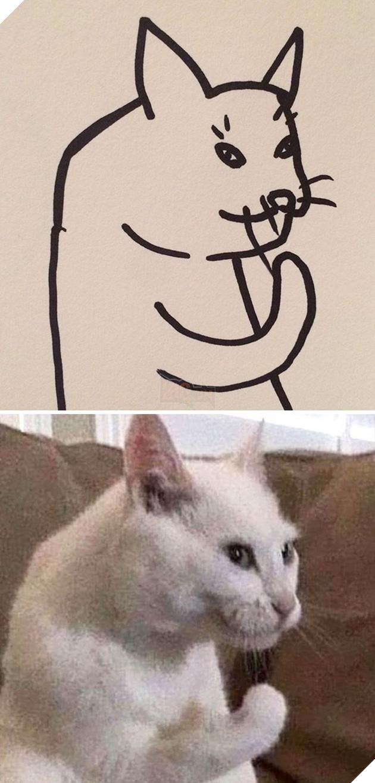 Vẽ mèo nguệch ngoạc khó cưỡng, trang Twitter thu hút 188.000 followers và kiếm được cả đống tiền - Ảnh 1.