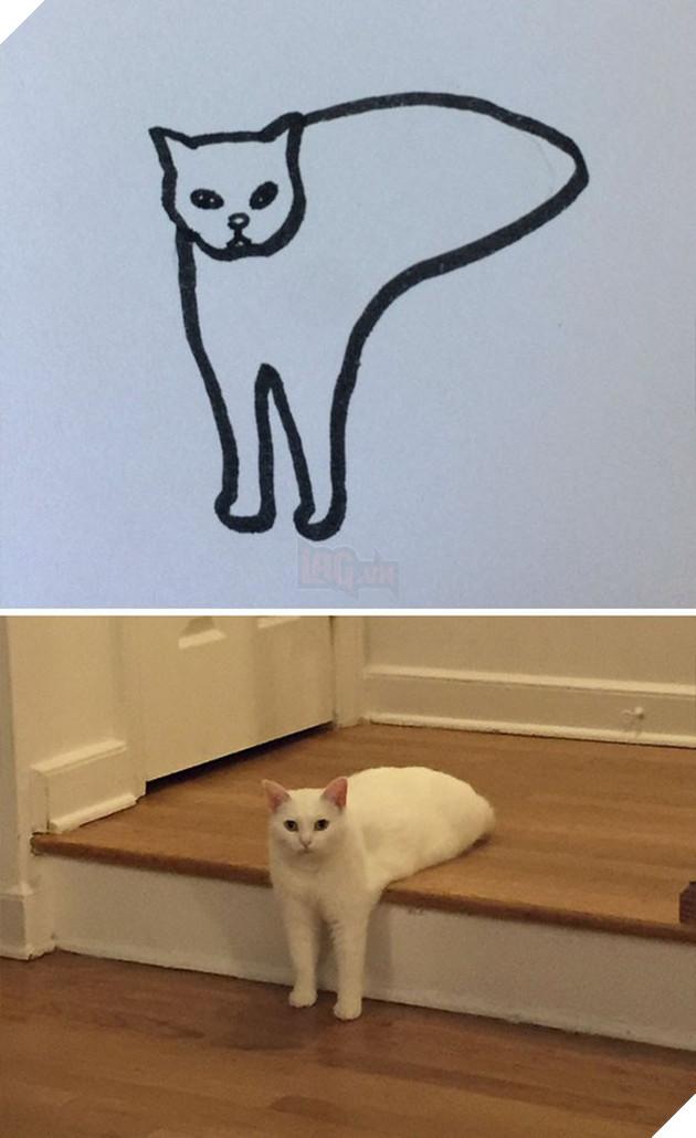 Vẽ mèo nguệch ngoạc khó cưỡng, trang Twitter thu hút 188.000 followers và kiếm được cả đống tiền - Ảnh 14.