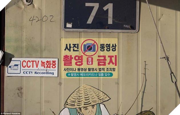 Tại Hàn Quốc chó làm thịt đang khốn khổ vì bầy bán công khai khiến người khác đau lòng 7