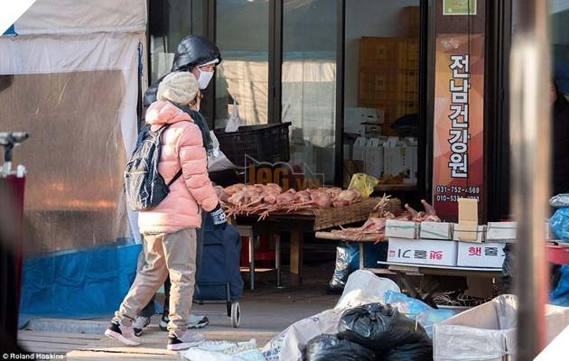 Tại Hàn Quốc chó làm thịt đang khốn khổ vì bầy bán công khai khiến người khác đau lòng 9