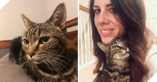 Câu chuyện chú mèo đi lạc 13 năm bất ngờ đoàn tụ với chủ cũ khiến dân mạng cảm động - Ảnh 5.