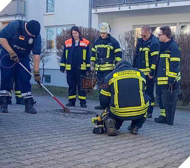 Đức: Chuột béo đến nỗi mắc kẹt ở nắp cống, 7 lính cứu hỏa phải toát mồ hôi mới cứu được - Ảnh 2.