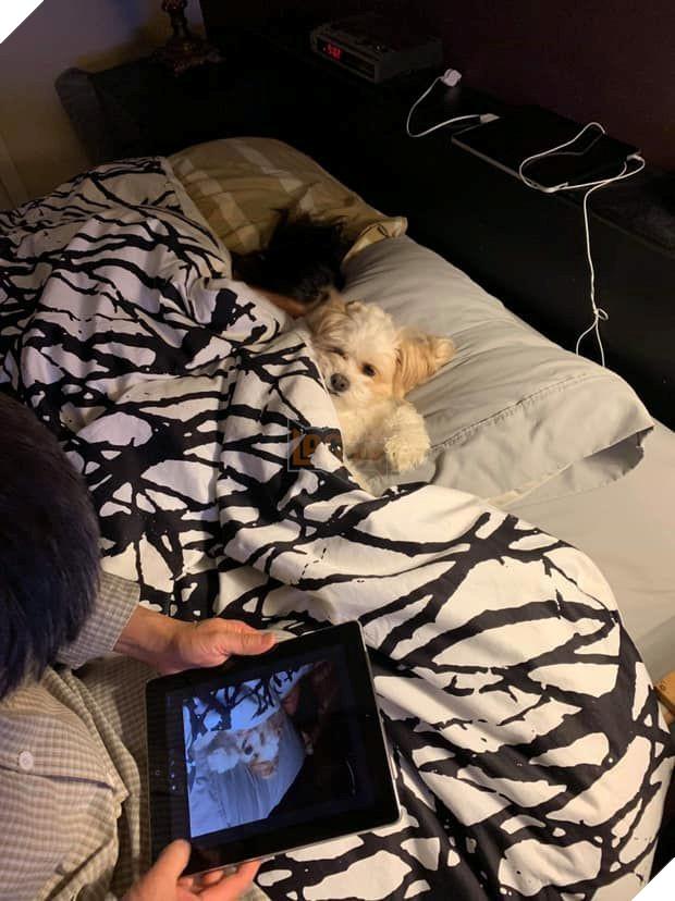 Sau đó lại được nằm hẳn hoi lên giường, đắp chăn ngủ! (Nguồn: Subtle Asian Traits).