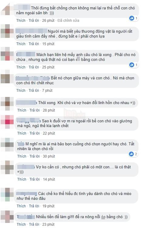 Những bình luận hài hước từ phía dân mạng.