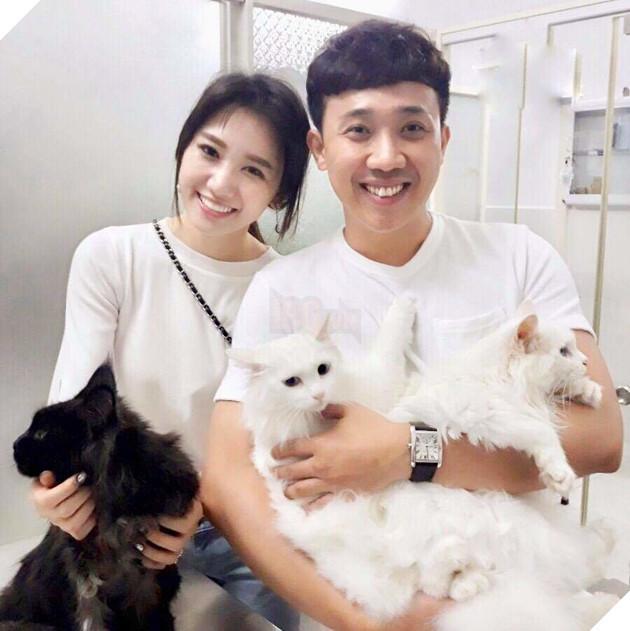 Vợ chồng Trấn Thành và Hari Won cũng không ngoại lệ khi sở hữu một chú Maine Coon có giá gần 70 triệu đồng. Ảnh: Internet