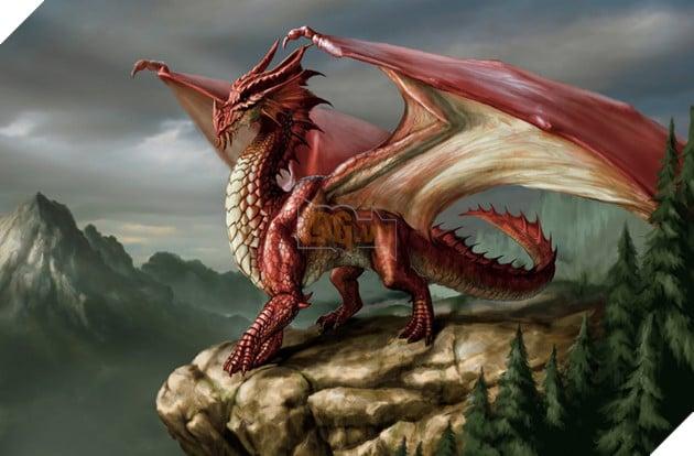 Top 12 loài rồng nổi tiếng nhất trong thế giới ngành game mà không phải ai cũng biết 7