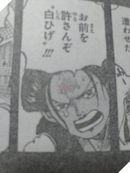 Spoilers One Piece 964 chính thức: Gol D Roger xuất hiện cùng Shanks thời còn trẻ