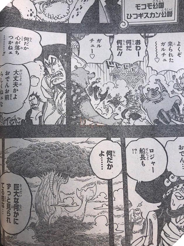 Spoiler One Piece 967 - Roger đặt chân đến Laugh Tale kết thúc cuộc phiêu lưu của Roger 5