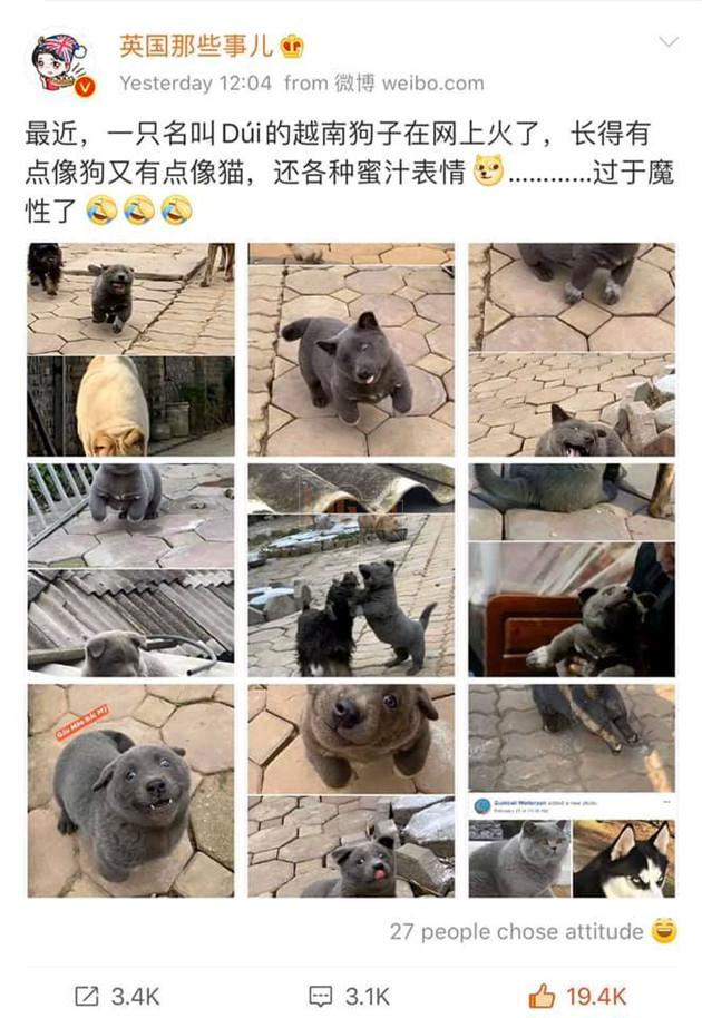 Nguyễn Văn Dúi xuất hiện trên mạng xã hội Trung Quốc (Ảnh chụp màn hình)