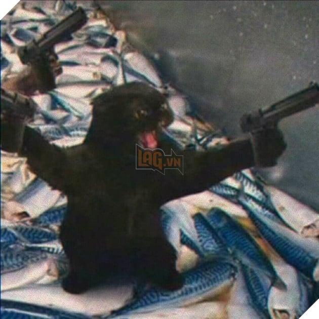 Mèo đen gào thét 2 tay cầm 2 súng