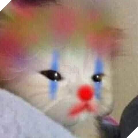 Mèo khóc biến thành chú hề