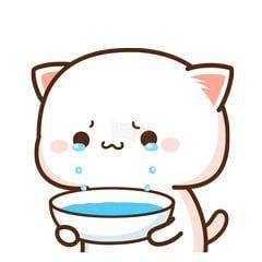 Mèo khóc lấy tô hứng nước mắt