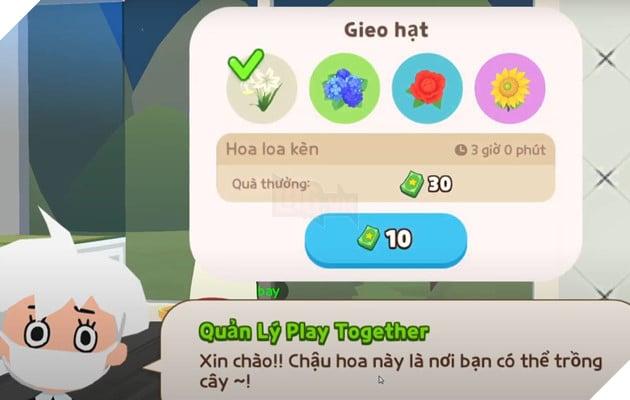 Play Together - Hướng dẫn cách trồng cây để kiếm thêm quà cho người chơi trong bản cập nhật 30 tháng 8 5